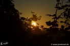 12/13 Sonne