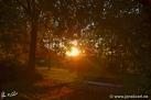12/16 Sonne