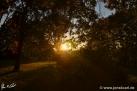 12/18 Sonne