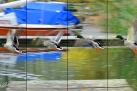 9/1 Stockentenflug (Fotomontage)