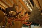 16/17 Weihnachtsmarkt Stuttgart 2012
