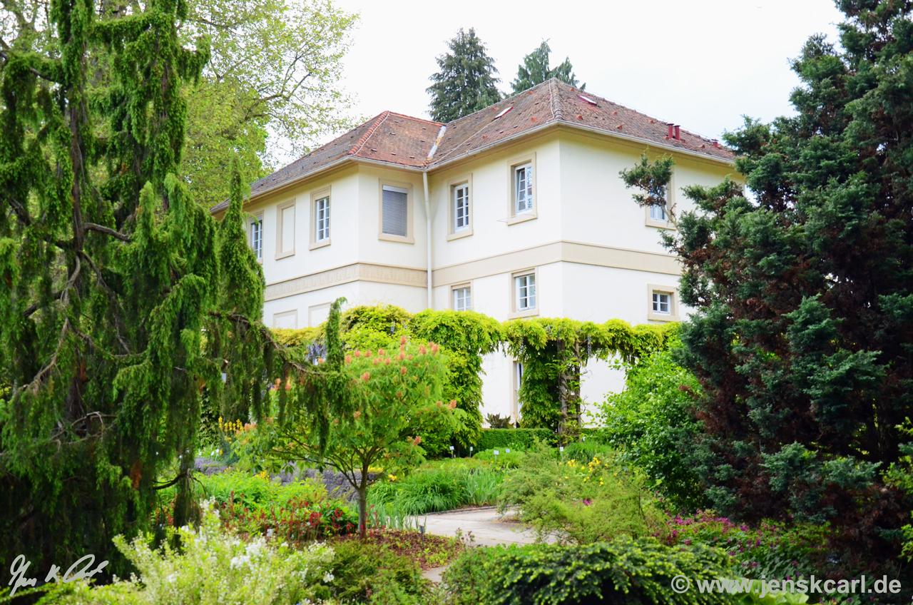 JKCarl_Botanischer_Garten_Hohenheim_01